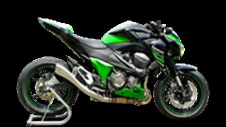 Immagine per la categoria Z 800 2013-2015
