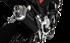Immagine di TERMINALE 4-TRACK R BLACK BMW F 850 GS 2019