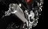 Immagine di TERMINALE 4-TRACK R SATIN  BMW F 850 GS 2019